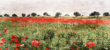 Marokko 1 – Mohnfeld – 120 x 50 cm