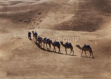 Marokko Sahara 1 – 80 x60 cm