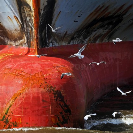 COSCO 1  –  100 x 100 cm  –  ALU – DIBOND PLEXI